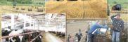 Санитарно-эпидемиологический надзор за состоянием сельскохозяйственных объектов